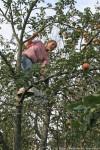Юля тоже залезла на дерево