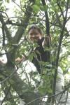 А потом Наташа залезла на дерево